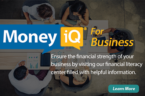 money iq for business overview